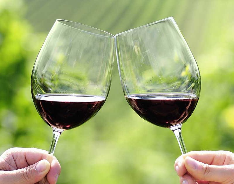 vino pugliese degustazione